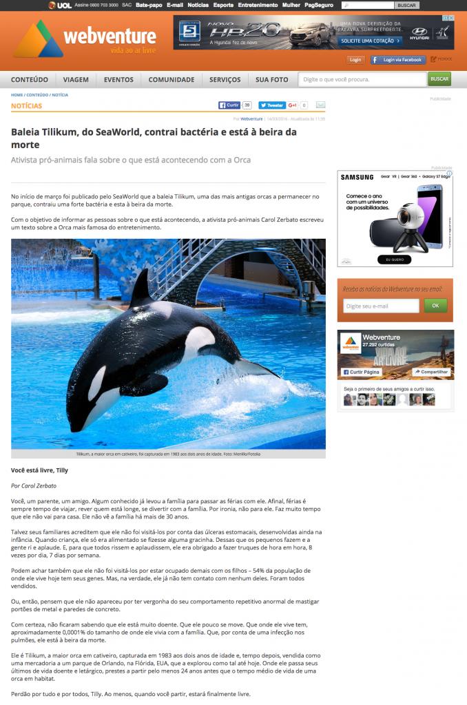 Baleia Tilikum do SeaWorld contrai bactéria e está à beira da morte Webventure A vida ao ar livre