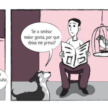 carol_passarinho