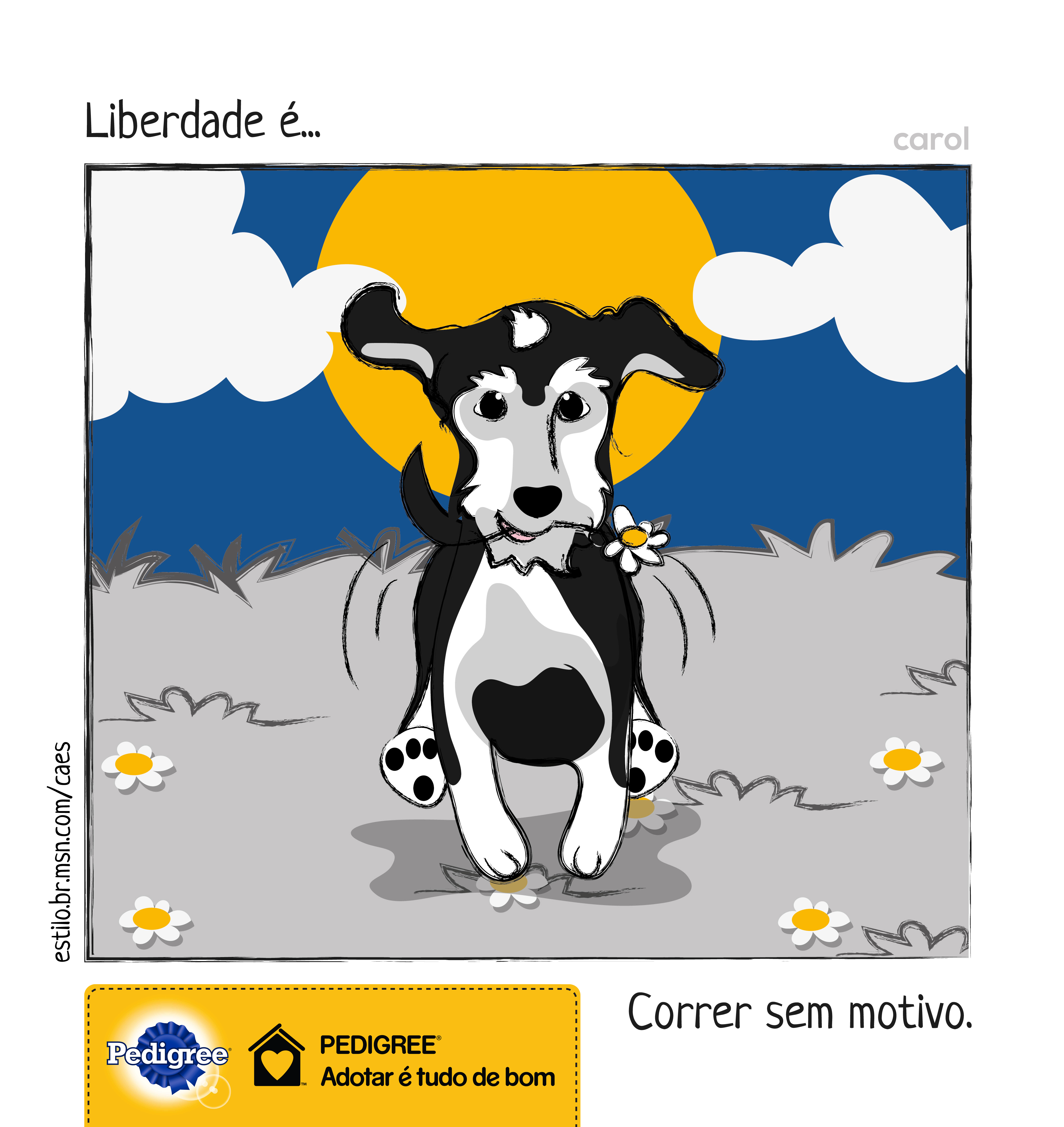 carol_pedigree_08_alta_v2