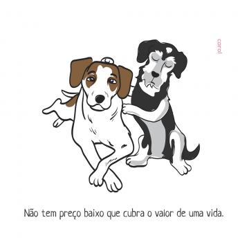 carol_cachorro